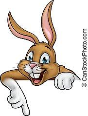 coelho, caricatura, coelhinho, páscoa, apontar, ou