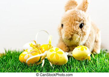 coelho páscoa, ligado, primavera, grama verde