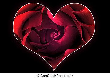 coeur, 3, rose