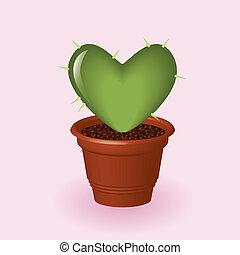 coeur, cactus