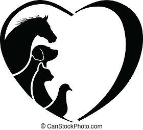 coeur, cheval, abstraction, love., vétérinaire, soin animal