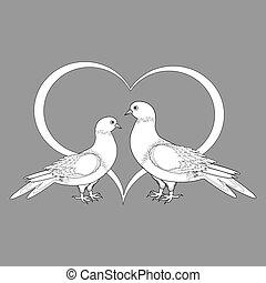 coeur, croquis, deux, colombes, monochrome