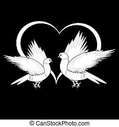 coeur, croquis, voler, deux, monochrome, colombes