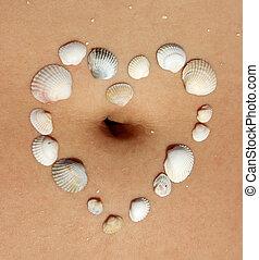 coeur, femme, abdomen, mer écale