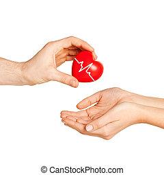 coeur, femme, donner, main, rouges, homme