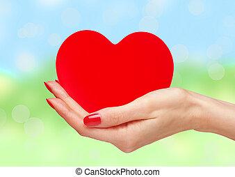 coeur, femme,  nature, sur, clair, fond, mains, rouges