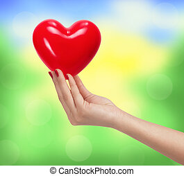 coeur, femme,  nature, sur, main, clair, fond, Brouillé, rouges
