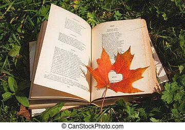 coeur, feuille, formulaire, mensonges, livre, herbe, érable