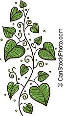 coeur, feuilles, formé, border.