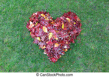 coeur, feuilles, raked, forme, herbe verte, baissé