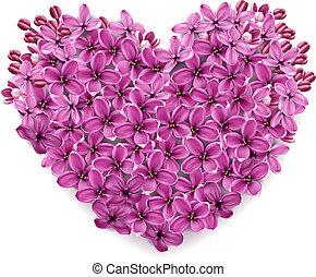 coeur, fleurs, lilac.