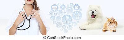 coeur, graphique, concept., vétérinaire, isolé, chien, symboles, stéthoscope, vétérinaire, fond, chat blanc, cadre, soin