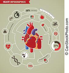 coeur humain, santé, maladie, et, attaque, infographic