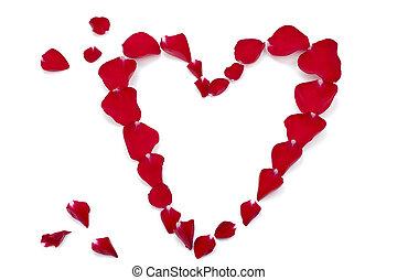 coeur, pétales, former, rose