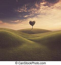 coeur, paysage arbre