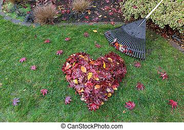 coeur, pelouse, feuilles, raked, forme, herbe verte, baissé