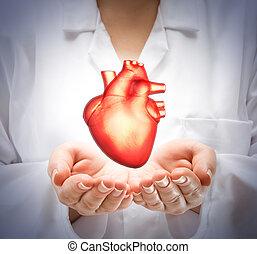 coeur, projection, docteur femme