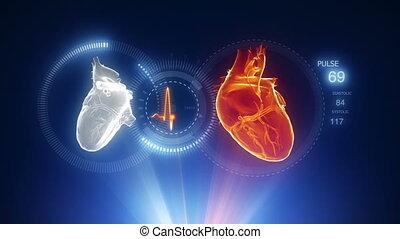 coeur, projection, rayon x, bleu, balayage