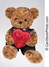 coeur, rouges, tenue, ours, teddy
