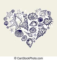 coeur, shells.