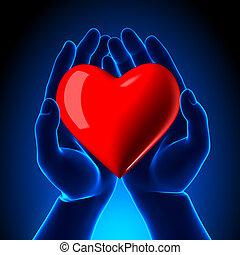 coeur, symbole, mains