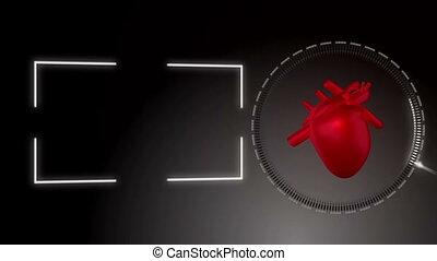 coeur, vidéo, battement, contre, bl