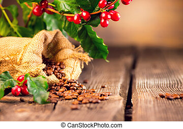 Coffee background. Real coffee plant on wooden table. Roasted beans in a sack