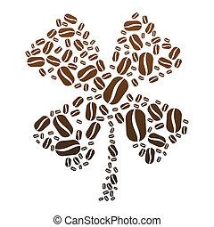 Coffee Bean Clover