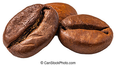Coffee bean isolated on white background. Clipping Path