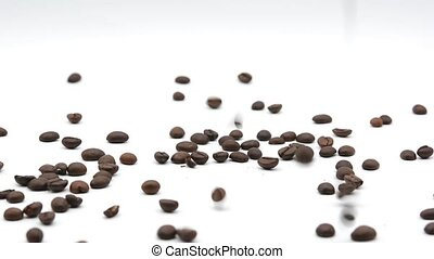 Coffee beans dropping footage on white background