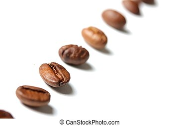 coffee beans in a row