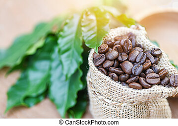 coffee beans in bag - Roasted coffee in sack with green leaf on wooden table background in the morning