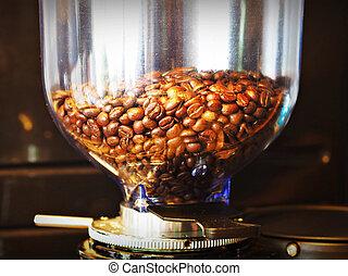 coffee beans in grinder machine