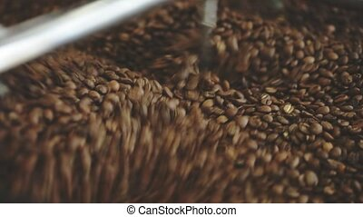coffee beans in roaster - Roasting coffee beans whirling...