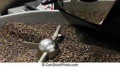 Coffee Beans is falling out In A Manufactory Workshop -...