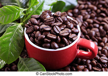 Roasted coffee beans in a red cup