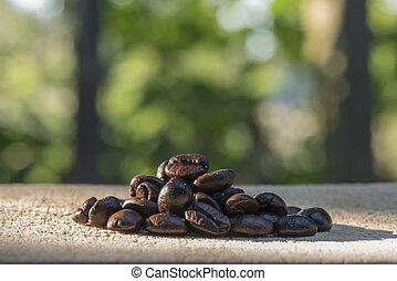 coffee beans with nature