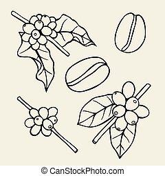 Coffee branch Plant - Coffee branch sketch illustration. ...