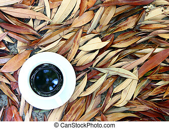 coffee cup on dry leaves