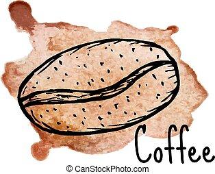 Coffee grain sketch on watercolor background. Vector illustration