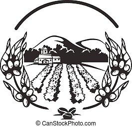 Coffee plantations banner