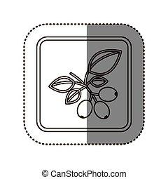 coffee tree icon image