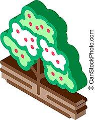 coffee tree isometric icon vector illustration