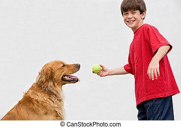 coger, niño, juego, perro