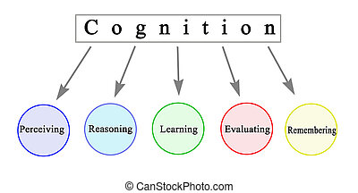 cognición, cinco, componentes