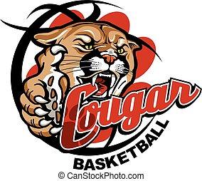 coguaro, pallacanestro