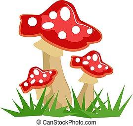 cogumelos, ilustração, branca, vetorial, experiência.