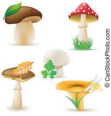 cogumelos, jogo, vetorial, ícones