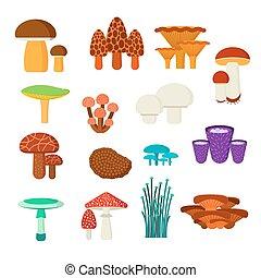 cogumelos, vetorial, jogo, ilustração