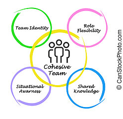 Cohesive team